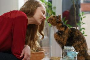 Katzenbetreuung - Katzensitter mit Katze